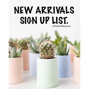 • Seasonal new arrivals sign up list 🌷
